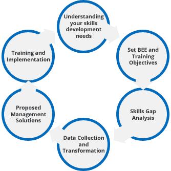 skills-development-process