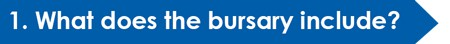 bursary-include