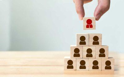 Managing Skills Development