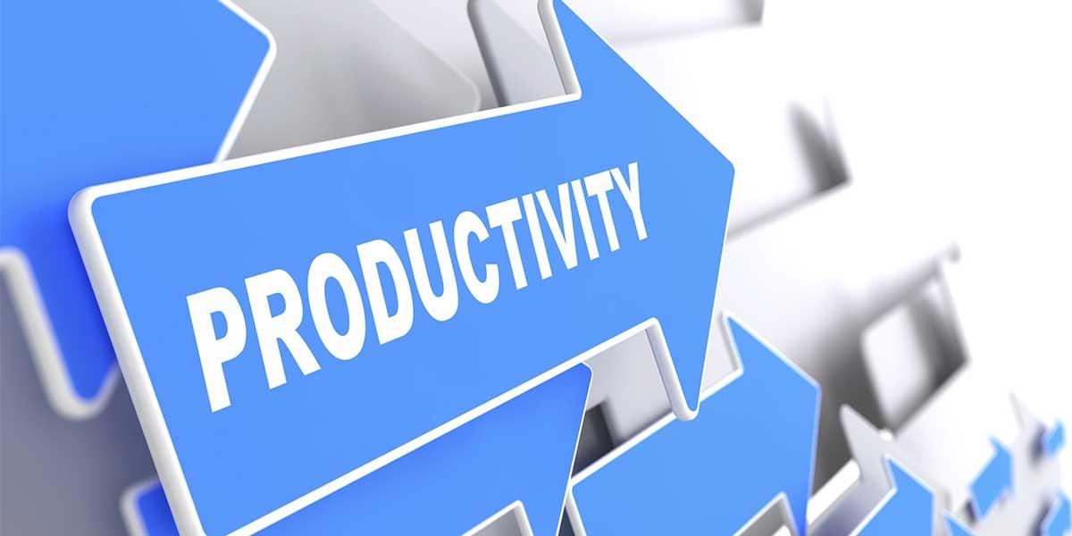 productivity-performance-management-sabppm